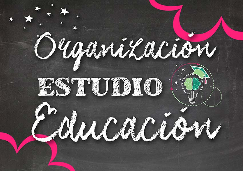 Organizacion estudio educacion ana esther teacher